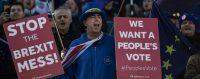 Des opposants au Brexit manifestent face au parlement britannique, Londres, Angleterre, 19 novembre 2018. © Dan Kitwood/Getty Images ©
