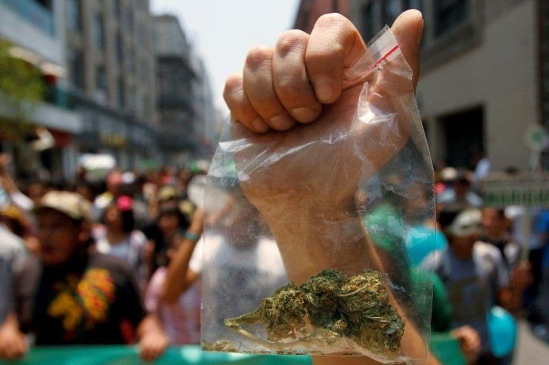 A protester held a bag of marijuana during a march for legalization in Mexico City in 2011. (Carlos Jasso/Reuters)