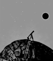 Portentosos agujeros negros