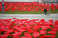 A woman cycles past an installation with thousands of poppy flowers at Koenigsplatz in Munich on Nov. 3 as Europe prepares to mark the centenary of the ending of World War I. (Reuters)