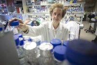 La científica Margarita Salas, en el Centro de Biología Molecular Severo Ochoa, en 2015. CARLOS ROSILLO