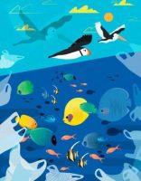 2019, année cruciale pour la biodiversité de l'océan