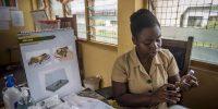 La necesidad de aprovechar al máximo la vacuna antimalaria