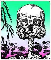 Hiroshima genocidio o acción de guerra