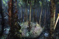 En 2016, une forêt de Laminaria hyperborea (algues brunes).Photo Station biologique de Roscoff, Sorbonne Université. Wilfried Thomas