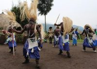 D'anciens braconniers effectuent une danse traditionnelle, qui fait partie des célébrations de l'Umuganura, à Kinigi, dans le Nord du Rwanda, en 2014. Photo Stéphanie Aglietti. AFP