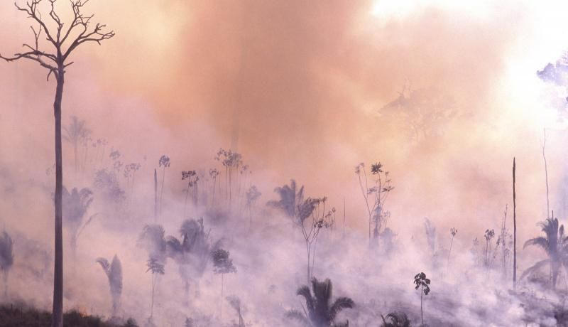 View of the Amazon rainforest in smoke. Photo: Getty Images.