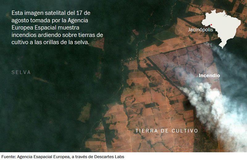 No estamos entendiendo los incendios de la Amazonia