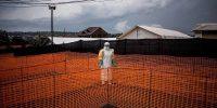 Cómo prevenir la próxima pandemia