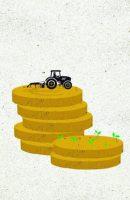 La agricultura española y el salario mínimo