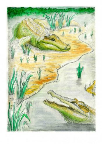Reconstrucción de los cocodrilos descubiertos en la mina de Ariño (Teruel). Dinópolis, Author provided