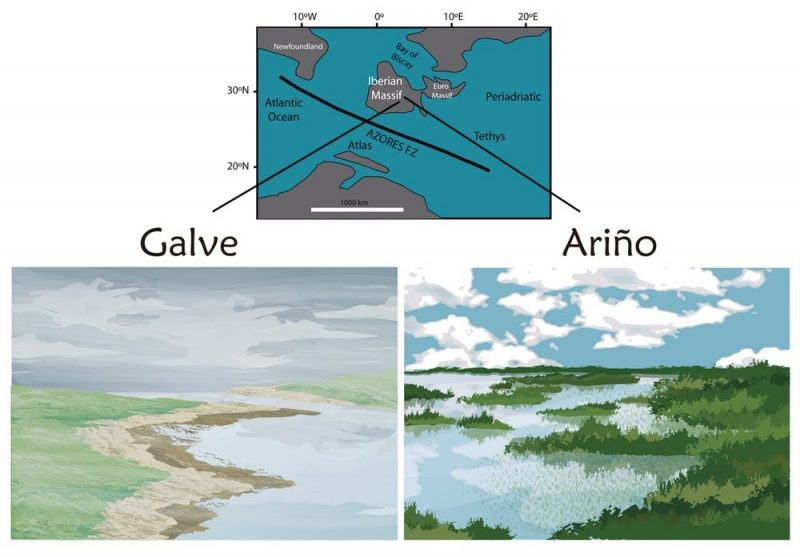 Península ibérica hace unos 130 millones de años (Cretácico inferior). Mapa modificado de Gerdes et al., 2010 en Geol. Soc./Reconstrucción paleoambiental de Lara de la Cita, Author provided
