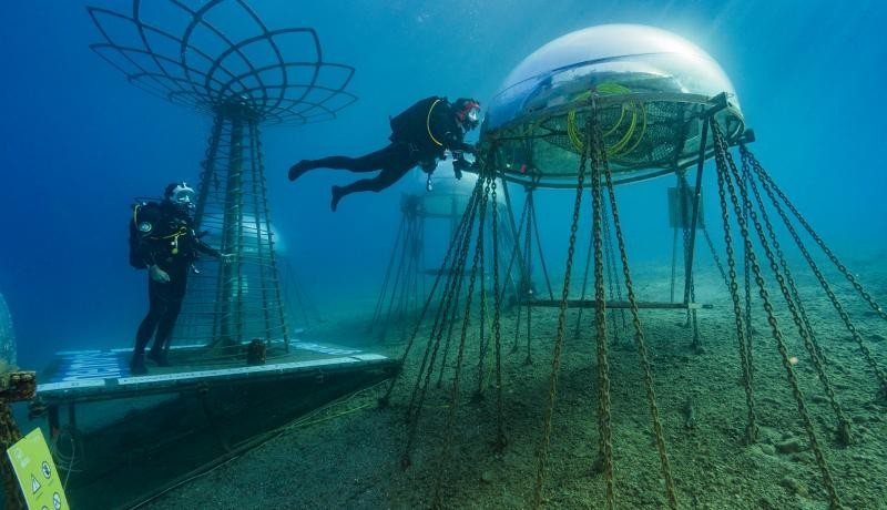 Professional divers maintain underwater bells at Nemo's Garden in Noli, Italy, an innovative agriculture project with no need to water or use pesticides, and the possibility of countries without arable soil using this method. Photo by Alexis Rosenfeld/Getty Images.