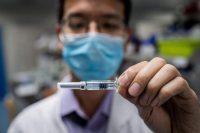 Un vaccin expérimental contre le Covid-19 développé par la compagnie chinoise Sinovac Biotech, actuellement testé sur des cellules de singes, à Pékin, le 29 avril. Photo Nicolas Asfouri. AFP