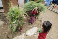 Escena diaria en el pueblo de Narapani, en Nepal, uno de los países más afectados por los impactos del cambio climático. Chris Steele-Perkins/Magnum Ph / FAO