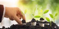 Reestructuración ecológica de la deuda soberana