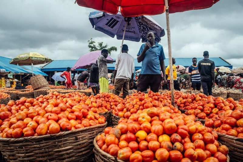 A vendor speaks on his cellphone as he sells fresh tomatoes on a stall at Orange Market in Mararaba, Nigeria, on Sept. 1. (Kc Nwakalor/Bloomberg)