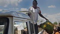 Un trabajador humanitario realiza una entrega a una beneficiaria del proyecto de Mundukide Fundazioa para la generación de oportunidades económicas a través de las capacidades agrícolas, apoyado por la AECID, en Cabo Delgado (Mozambique), en 2017. Miguel Lizana AECID