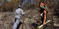 Un planeta sano necesita a los pueblos indígenas