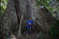 Un integrante del grupo indígena Uru Eu Wau Wau es retratado en la base de un árbol samaúma. Credit Victor Moriyama para The New York Times