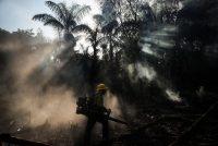 Un bombero de Prevfogo. Credit Fernando Bizerra Jr./EPA vía Shutterstock