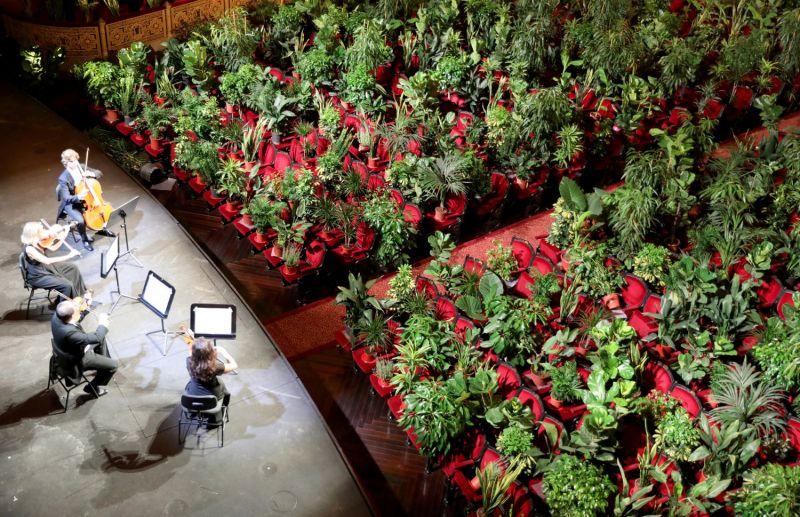 El patio de butacas del teatro del Liceo de Barcelona, lleno de plantas durante un concierto.NACHO DOCE / Reuters