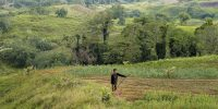 Farmer standing in his field in the agricultural landscape of Cotabato Province, Mindanao Island, the Philippines. Photo: Tessa Bunney/Contributor/Getty Images.