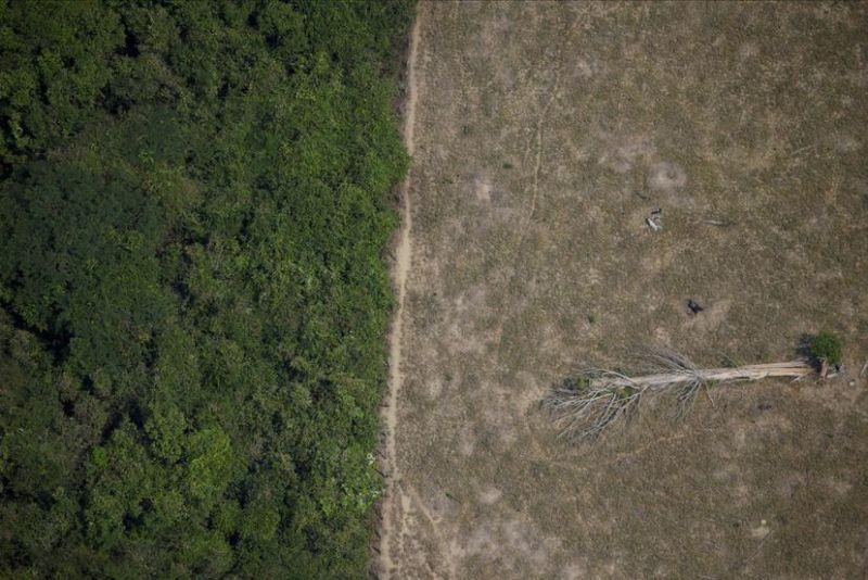 Imagen aérea de una zona talada en la Amazonia por madereros y granjeros, en 2020.UESLEI MARCELINO / Reuters