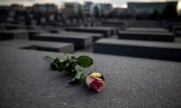 A rose on the Holocaust Memorial in Berlin to mark International Holocaust Remembrance Day on 27 January. Photograph: Maja Hitij/Getty Images