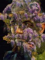 A Sánchez le crecen las wisterias