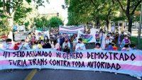 Manifestación trans y a favor de una ley de identidades estatales