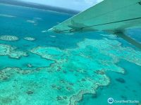 An aerial view of coral bleaching taking place along the Great Barrier Reef on Australia's northwestern coast. (ARC Center of Excellence for Coral Reef Studies)