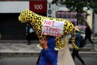 Trabajadores agrícolas y activistas marchan en Ciudad de México en contra del Tren Maya, el 21 de febrero de 2020. La ruta atraviesa la Reserva de Calakmul, la segunda mayor extensión de bosques tropicales en América. (AP Photo/Eduardo Verdugo)