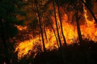 Flames soars through the forest on Monday in Mugla, Marmaris district, in Turkey. (Yasin Akgul/AFP/Getty Images)
