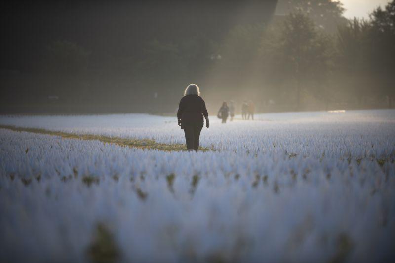 La niebla de la madrugada rodea la instalación artística 'In America - Remember' de más de 600,000 banderas blancas en el Monumento a Washington en Washington, D.C., el 3 de octubre de 2021. Esta honró a las personas fallecidas por COVID-19 en la pandemia. (Astrid Riecken/For The Washington Post)